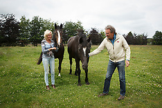 Greenfield Stables - Familie Stampaert 2014