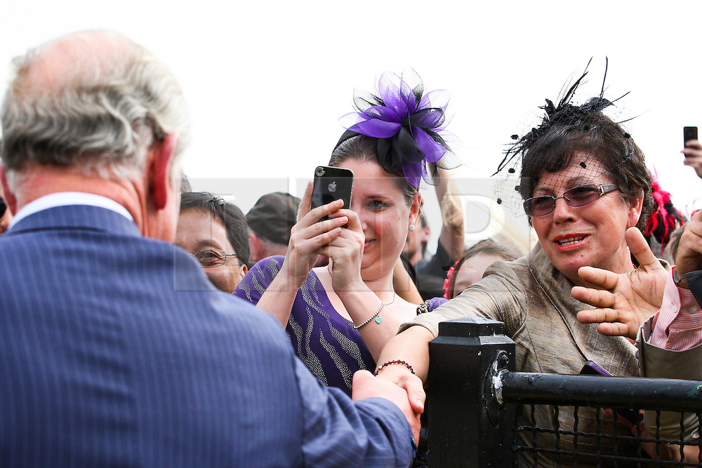 © Licensed to London News Pictures. 06/11/2012. Members of the crowd shake hands and take photos of Prince Charles as he walked around the mounting yard during the Emirates Melbourne Cup at the Flemington Racecourse, Melbourne. Photo credit : Asanka Brendon Ratnayake/LNP