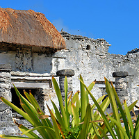 House of the Halach Uinic Close Up at Mayan Ruins in Tulum, Mexico<br /> If you look closely below the red thatched roof of the House of the Halach Uinic you will see a reoccurring carving on the buildings at Tulum: the Descending or Diving God. This makes archeologist believe the building was not only the residence for their supreme king but also a temple for religious and burial ceremonies.
