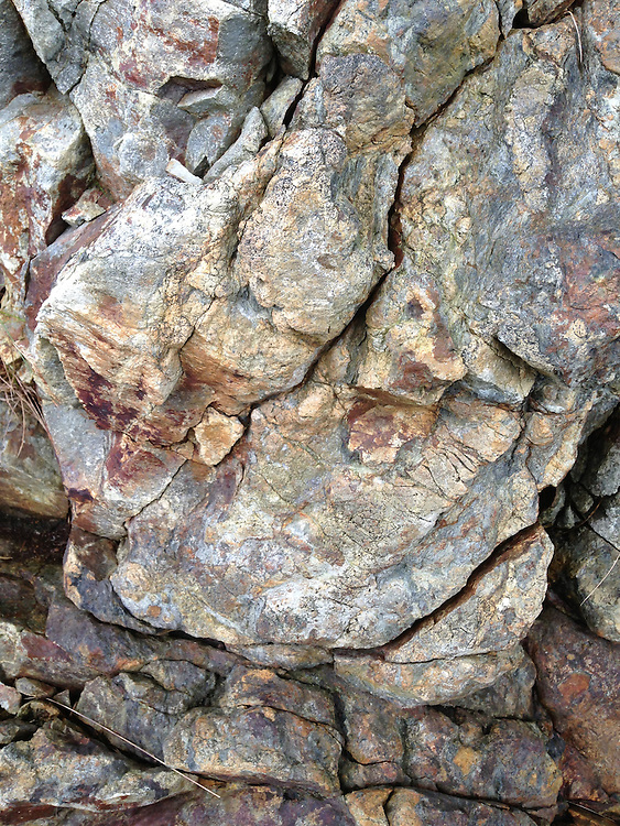 Rock Face Detail, Castine, Maine, US