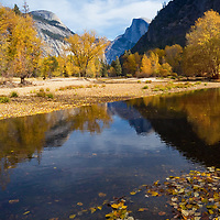 Yosemite in the Fall in one of the best times to visit Yosemite National Park. The crowds diminish as the park gets much quieter. While Yosemite is not famous for its fall colors it does have a surprisingly great color in the fall. Most of the trees are evergreen, except for a variety of big-leaf maples, California black oaks, cottonwoods and Pacific Dogwoods that put of quite a display in the fall. The best time to visit Yosemite in the fall in usually at the end of October when the colors are at peak. This year the colors were amazing as I hiked along the sandy shores of the Merced River to find this unique spot with a view of the iconic Half Dome.