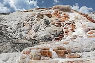Travertine terraces, Mammoth Hot Springs, Yellowstone National Park