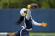 Jun 3, 2019; Costa Mesa, CA, USA; Los Angeles Chargers receiver Geramy Davis (11) attempts  to catch a pass during organized team activities at the Hoag Performance Center.