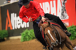 Fonck Bernard (BEL) and  BA Reckless Chick made with their performance the dream of the silver medal reality<br /> Alltech FEI World Equestrian Games <br /> Lexington - Kentucky 2010<br /> © Dirk Caremans