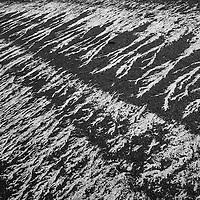 Seaweed patterns on tarmac