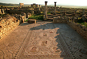 MOROCCO, ROMAN, VOLUBILIS Roman City, 1st-3c.AD; house and mosaic