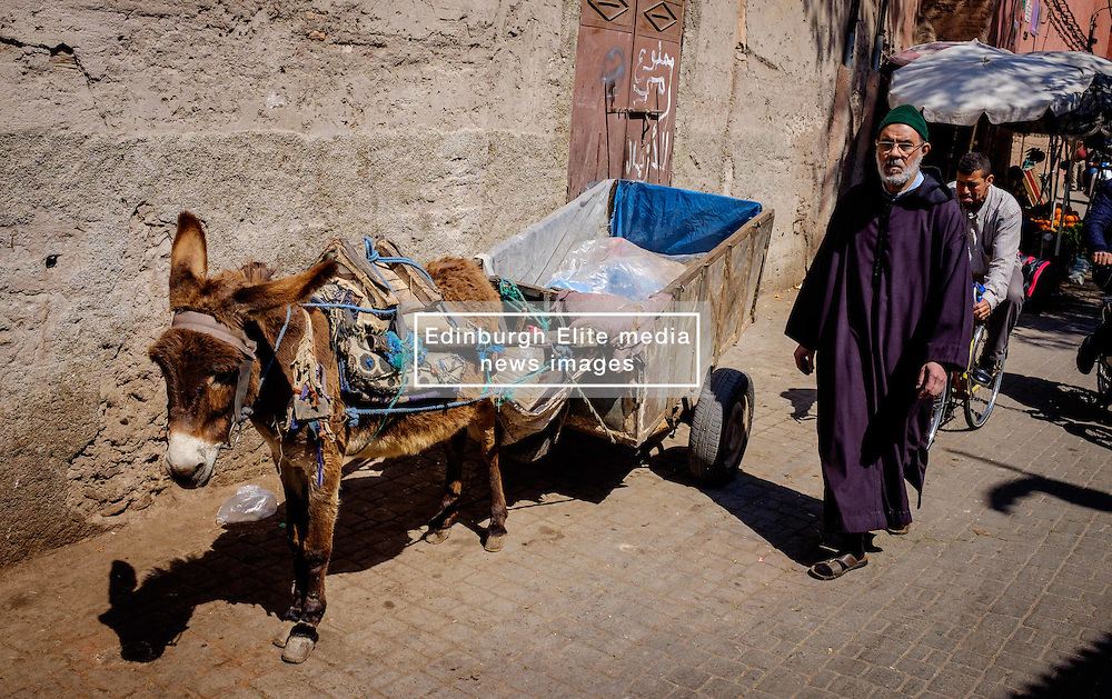 A Morrocan man walks past a donkey and cart  in the medina, Marrakech, Morocco, North Africa<br /> <br /> (c) Andrew Wilson | Edinburgh Elite media