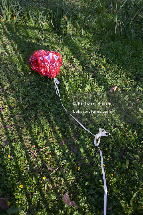 A deflated valentine balloon lies flat in grass on  south London estate, a statement of a failed relationship.
