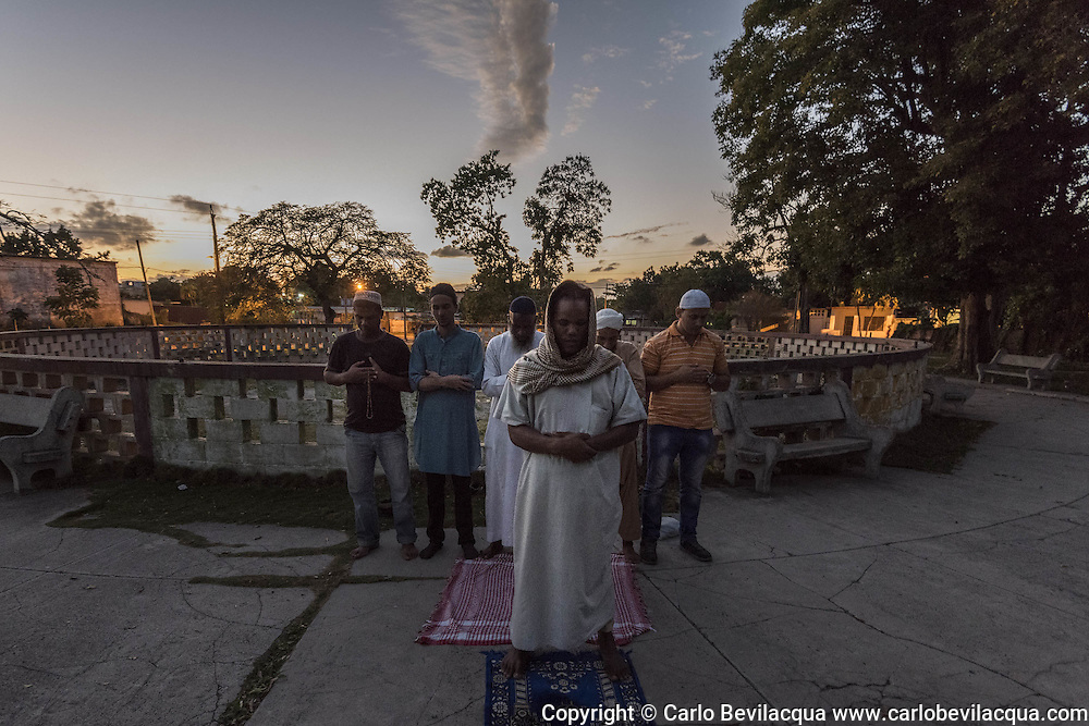 Sunset pray in a garden of Havana.