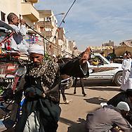 market , street life  Louxor - Egypte    /  marche , scenes de rues  Louqsor - Egypt