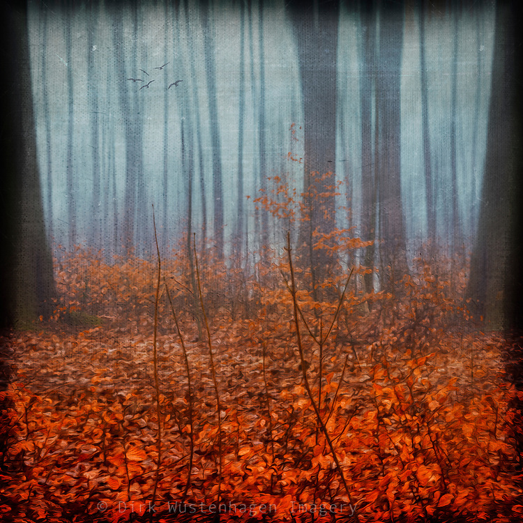 Painterly abstraction of a misty forest scene in fall