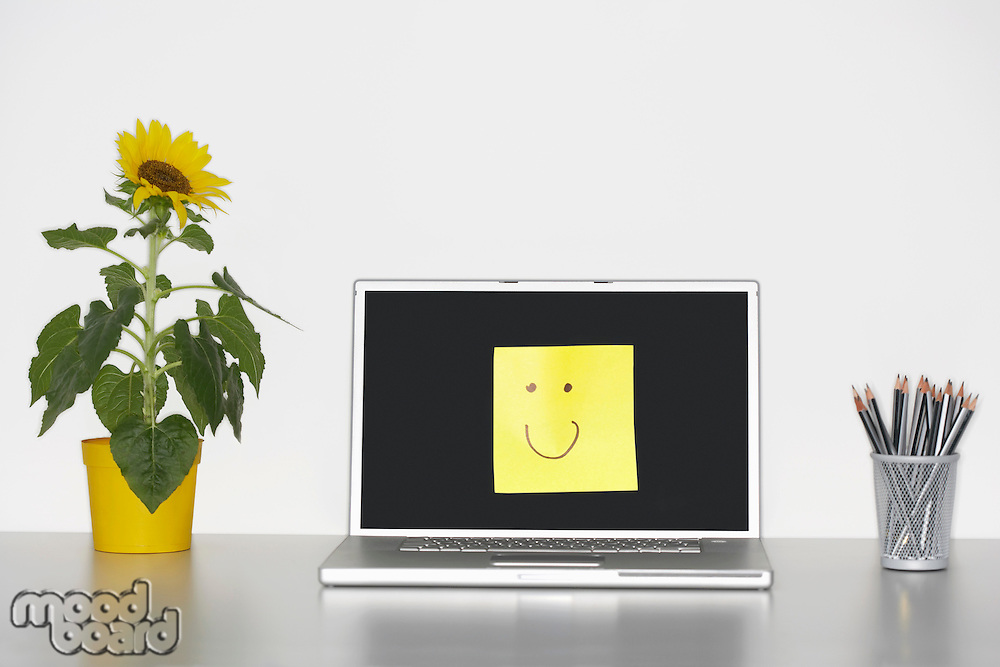 Smiley face on laptop by pencils in cup and flowers on desk