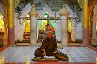 YANGON, MYANMAR -NOVEMBER 25, 2016 : monks praying at Shwedagon Pagoda Yangon (Rangoon) in Myanmar (Burma)