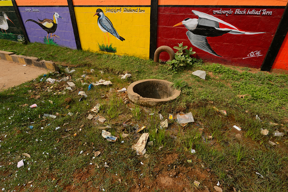 Wall paintings of birds, Pulicat Lake, Tamil Nadu, India