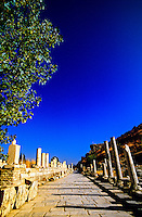 Marble Avenue, Ephesus (Efes) archaeological site, Turkey