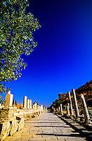 Marble Avenue, Ephesus (Efes) archaeological site, Turkey
