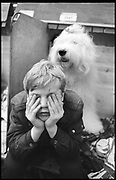 BIGGLES; MICHAEL MCMAHON, Crufts, Olympia. London. 1987.
