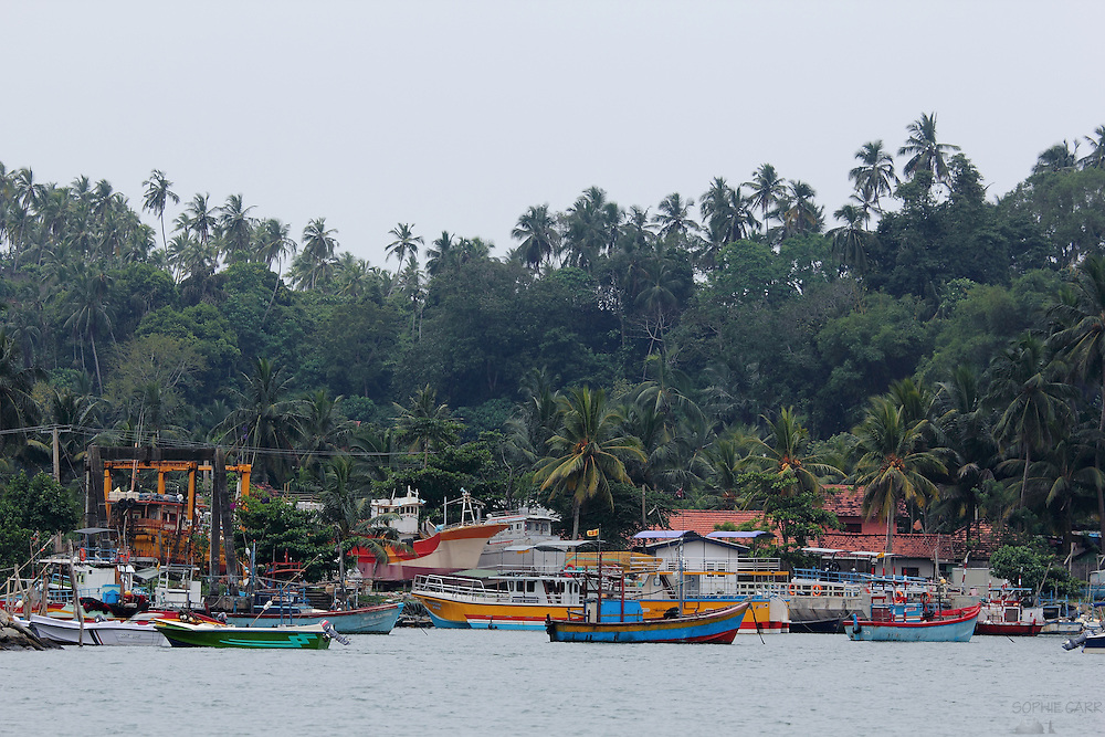 Colourful fishing boats in Mirissa Harbour in southern Sri lanka