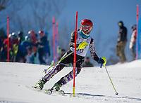 Piche Open Slalom at Gunstock.  U14 1st run.  ©2014 Karen Bobotas Photographer