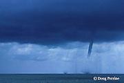 waterspouts, Bimini, Bahamas ( Western Atlantic Ocean )