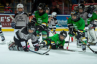 KELOWNA, CANADA - NOVEMBER 25: Kelowna Minor Hockey initiation players scrimmage during intermission at the Kelowna Rockets against the Medicine Hat Tigers on November 25, 2017 at Prospera Place in Kelowna, British Columbia, Canada.  (Photo by Marissa Baecker/Shoot the Breeze)  *** Local Caption ***