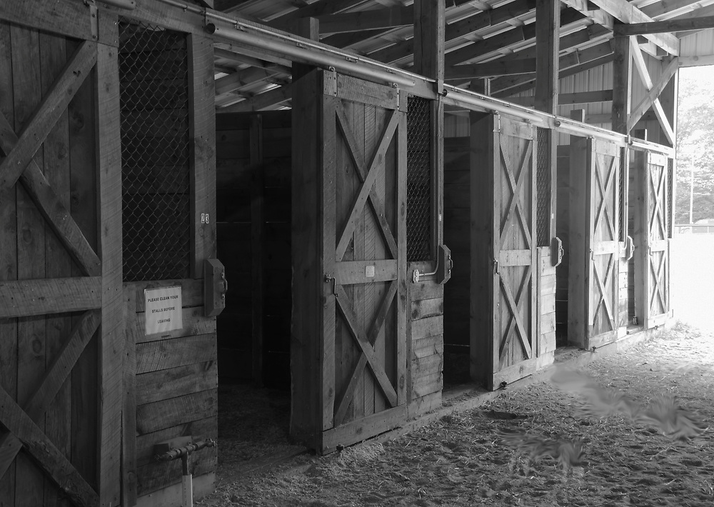 Horse stalls in black and white