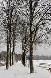 Winter, koud, cold snow, sneeuw, winter, cold, wit, white