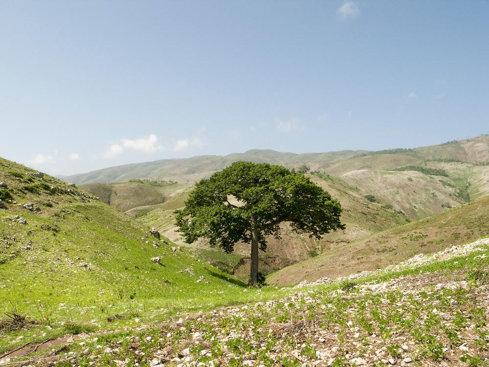 Artibonit Valley, Haiti. 4/10/2009. Photo by Ben Depp