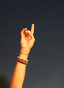 A hand in the air, making the devil rock sign, Nokia Isle of Wight Festival, Sealclose Park, Newport, UK June 2006