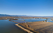 Flooded rice fields in the Ebro Delta, aerial view, Tarragona, Catalonia, Spain. The Ebro Delta is the large delta area of the Ebro river, creating a huge wetland area used for agriculture and with protected areas for wildlife, including the Ebro Delta Natural Park. The area has a variety of different ecosystems including lagoons, sand dunes, salt marsh and rice fields which cover around 15000 hectares. Picture by Manuel Cohen
