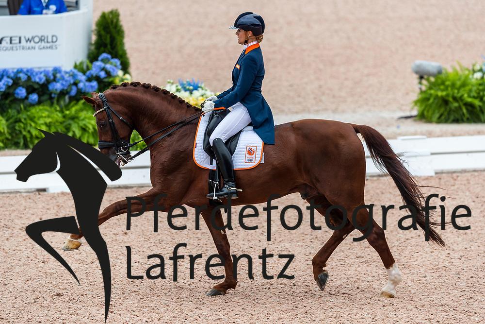 WITTE-VREES Madeleine (NED), Cennin<br /> Tryon - FEI World Equestrian Games™ 2018<br /> Grand Prix de Dressage Teamwertung und Einzelqualifikation<br /> 12. September 2018<br /> © www.sportfotos-lafrentz.de/Stefan Lafrentz