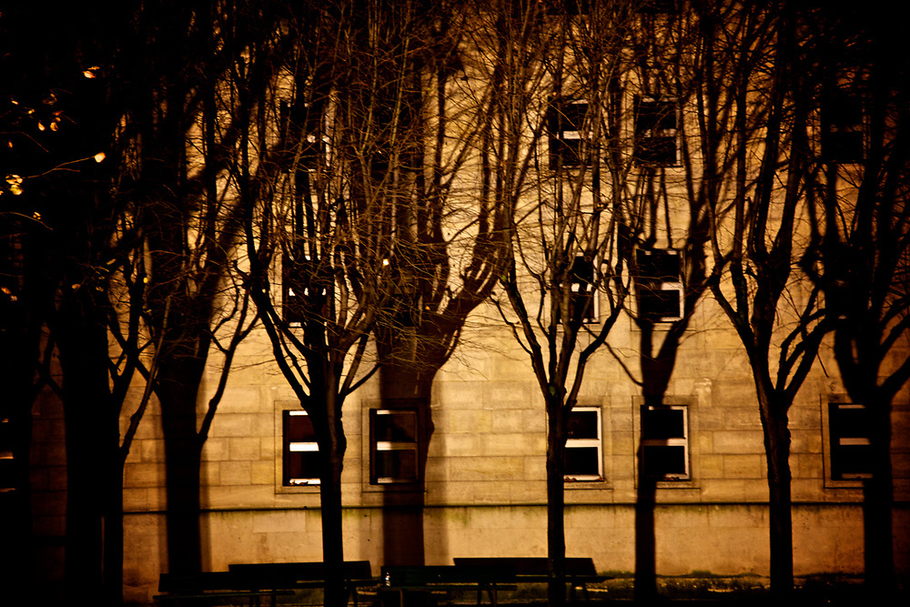 Trees, Shadows, Windows. Paris<br />