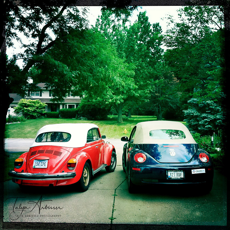 Bug love - Davenport, Iowa