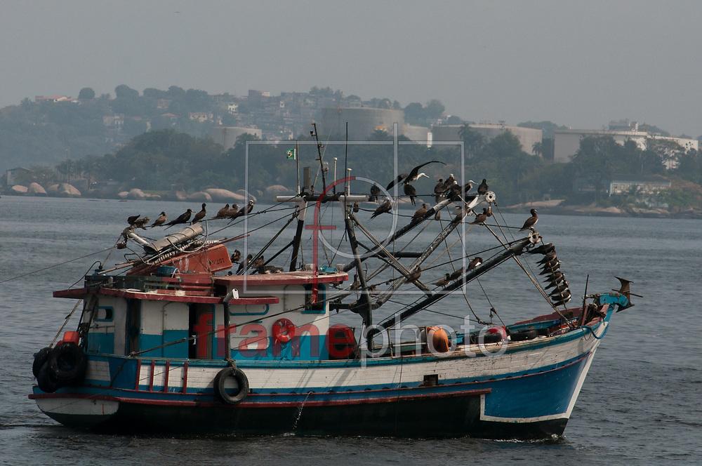 Rio de Janeiro - 20/09/2013 - Rio de Janeiro tem seus últimos dias de inverno com clima quente e céu coberto por uma nevoa forte na manhã desta sexta-feira (20). Na baía de Guanabara próximo a Ilha do Governador aves e pescadores dividem os peixes que resistem a poluição da baía -  FOTO: ERBS JR./FRAME