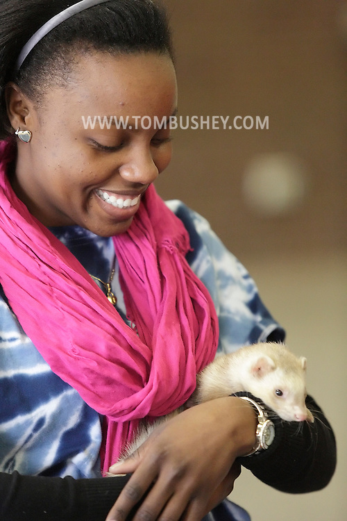 SUNY Orange student Saritza St. Thomas holds a ferret during a program by wildlife conservationist Ed Laquidara at SUNY Orange in Middletown on Tuesday, Feb. 26, 2013. The program was sponsored by the Board of Activities.