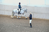04 - 21st Jan - Dressage Demo