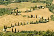 Road near Pienza, Tuscany, Italy, Europe