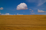 Sky and Clouds in Eastern Washington State