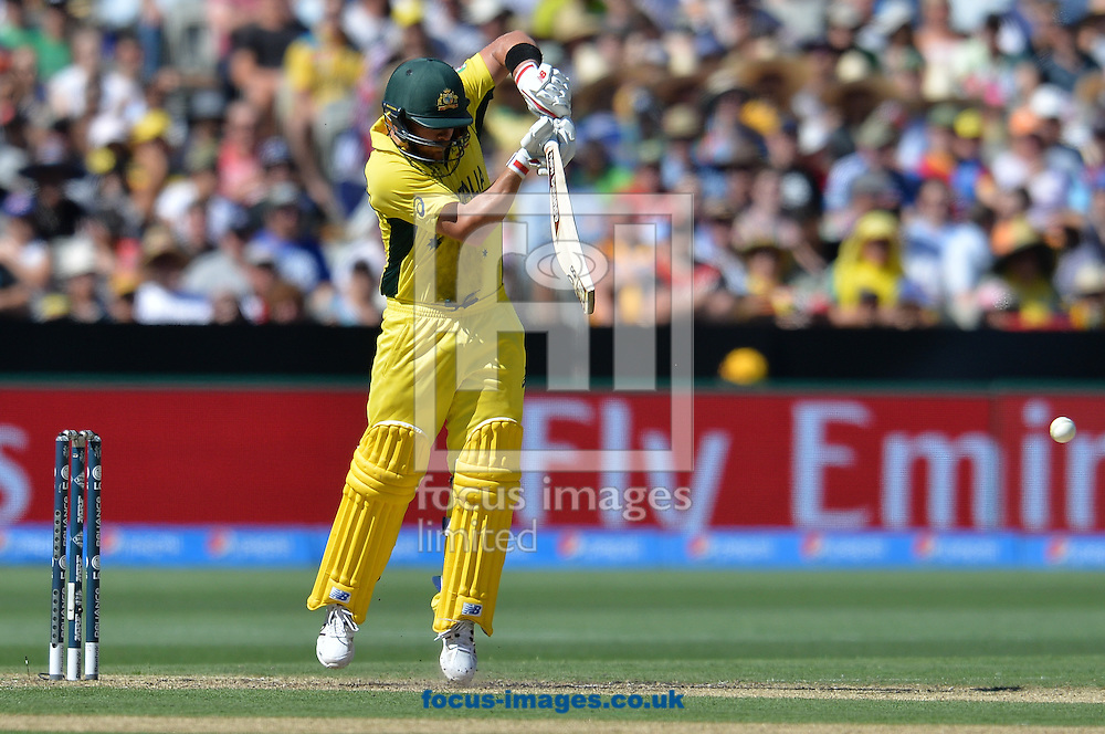 Aaron Finch of Australia bats during the 2015 ICC Cricket World Cup match at Melbourne Cricket Ground, Melbourne<br /> Picture by Frank Khamees/Focus Images Ltd +61 431 119 134<br /> 14/02/2015