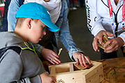 Graz, Austria - 2017 March 23: Special Olympics Athlete creates with volunteers help house for insects while Special Olympics World Winter Games Austria 2017 at Convention Centre Messe Graz on March 23, 2017 in Graz, Austria.<br /> <br /> Mandatory credit:<br /> Photo by &copy; Adam Nurkiewicz / Mediasport<br /> <br /> Adam Nurkiewicz declares that he has no rights to the image of people at the photographs of his authorship.<br /> <br /> Picture also available in RAW (NEF) or TIFF format on special request.<br /> <br /> Any editorial, commercial or promotional use requires written permission from the author of image.<br /> <br /> Image can be used in the press when the method of use and the signature does not hurt people on the picture.