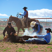4D L&C Ranch Day