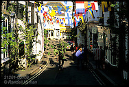 Man carries sycamore down street as he decorates town with branches evening before May Day; Padstow, Cornwall, England.