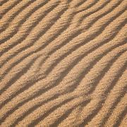 Sahara Sands VII (Western Desert, Egypt)