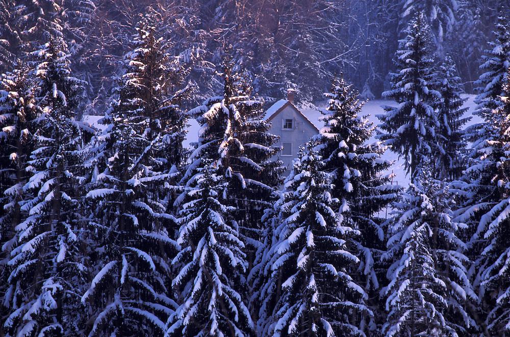 Winter Landscape near Heidenl, Swiss Alps, Appenzell Canton, Switzerland
