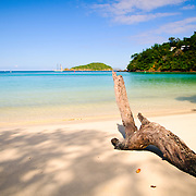 Driftwood at the beautiful sandy beach of Maho Bay on the north shore of St. John in the US Virgin Islands in the Caribbean.