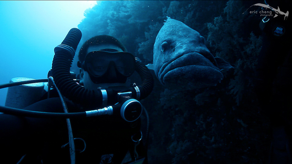Self-video screen grab. Hanging out with a potato cod at 130'. Carl's Ultimate, Eastern Fields, Papua New Guinea.