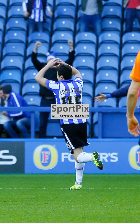 Fernando Forestieri celebrates his second during Sheffield Wednesday v Wolves, SkyBet Championship, Sunday 20th December 2015, Hilsborough, Sheffield