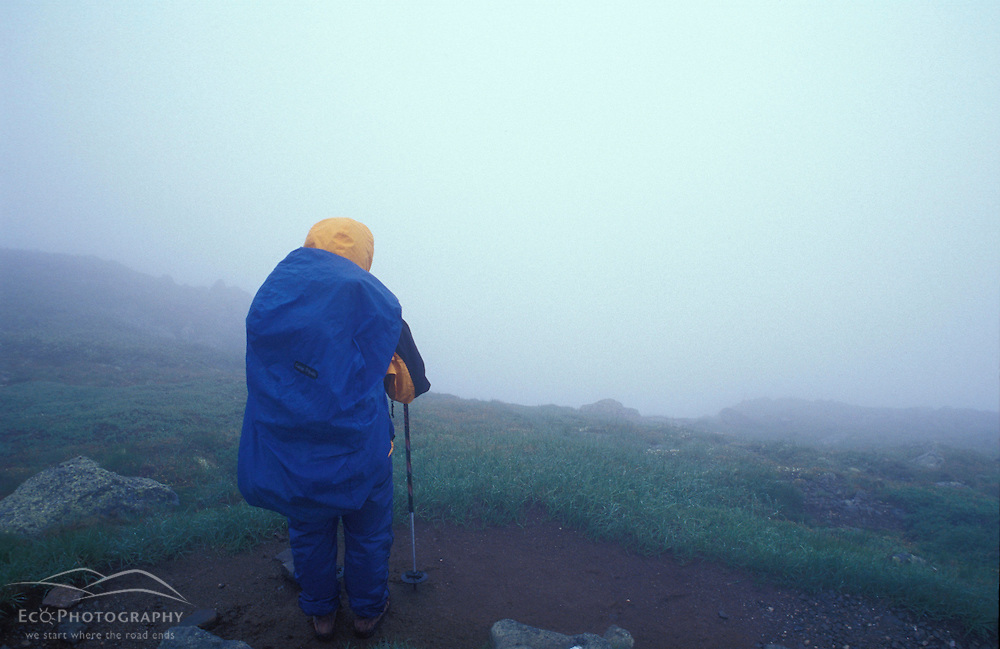 Backpacking. Gulfside Trail, part of the Appalachian Trail. Fog.  At the top of King Ravine.  White Mountain N.F., NH