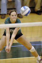 27 October 2006: Katie Windsor gets set for a service reception. The Bears won the match 3 games to 1. The match between the Washington University Bears and the Illinois Wesleyan Titans took place at Shirk Center on the IWU campus in Bloomington Illinois.<br />