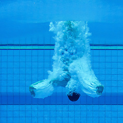Fina NVC Diving World Series | London | 3 May 2015